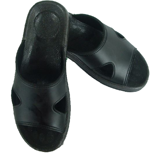 Anti static Slippers